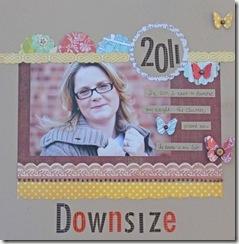 downsize1
